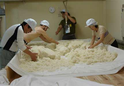 Rice being readied to be made into sake (Photo courtesy of Flickr user VancouverSake)