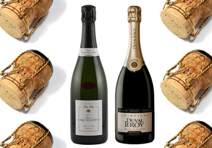 GAYOT's Top 10 Mid-Range Champagnes list includes excellent Champagne suggestions that range between $60 and $100