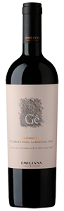 Vinedos Emiliana 2012 Gê smells of blackberry, plum and a whiff of old leather