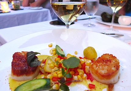 Check out GAYOT's Top 10 Seafood Wines to find the perfect bottle to pair with scallops, shrimp, salmon and more