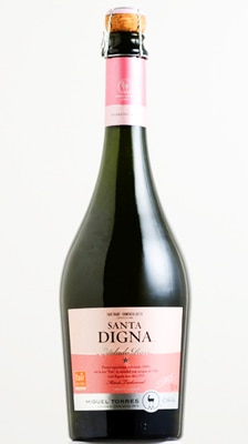 Santa Digna 2012 Estelado Rose is made in Chile from the Pais varietal