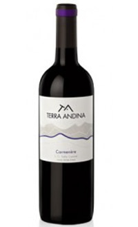 Terra Andina 2009 Carmenere, on our list of the Top Value Wines