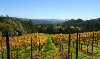 Schramsberg Vineyards in Calistoga, California
