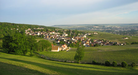 A view from the Royal Champagne hotel in France's Champagne wine region