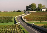 Check out GAYOT's Top 10 Wine Routes in the World, featuring byways through famous wine regions in France, California and beyond