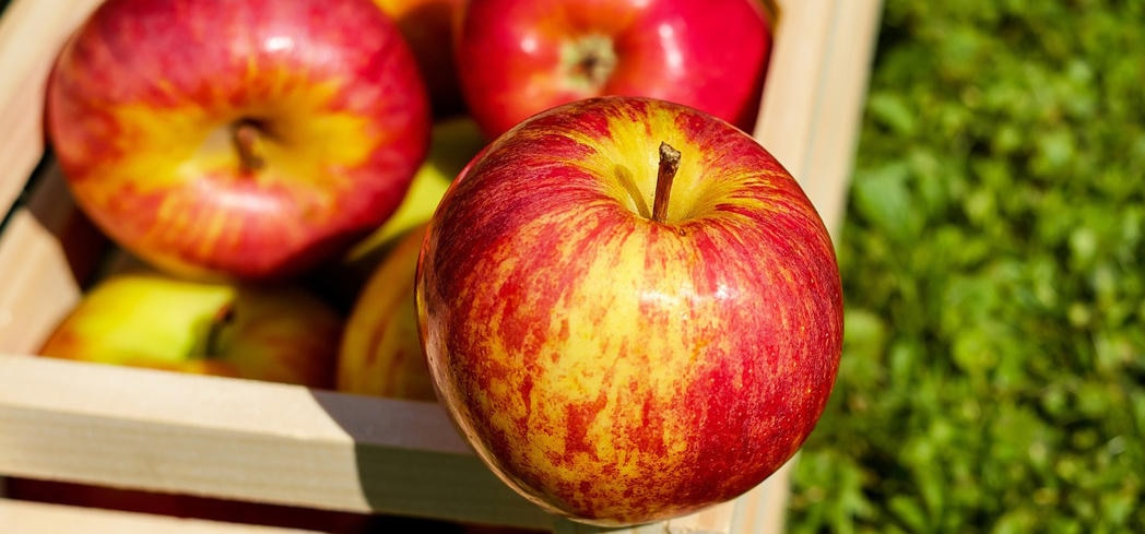 Apples pack a type of anti-viral and anti-inflammatory antioxidant called flavonol