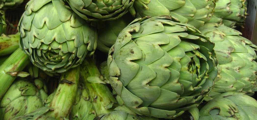 Artichokes contain high levels of antioxidants