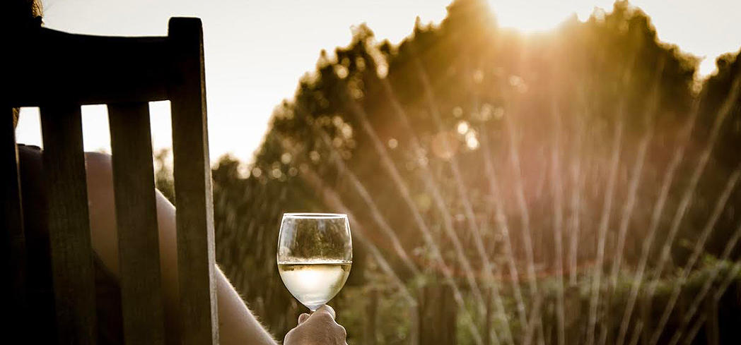 Discover the best bottles of vino with GAYOT's Top 10 Summer Wines