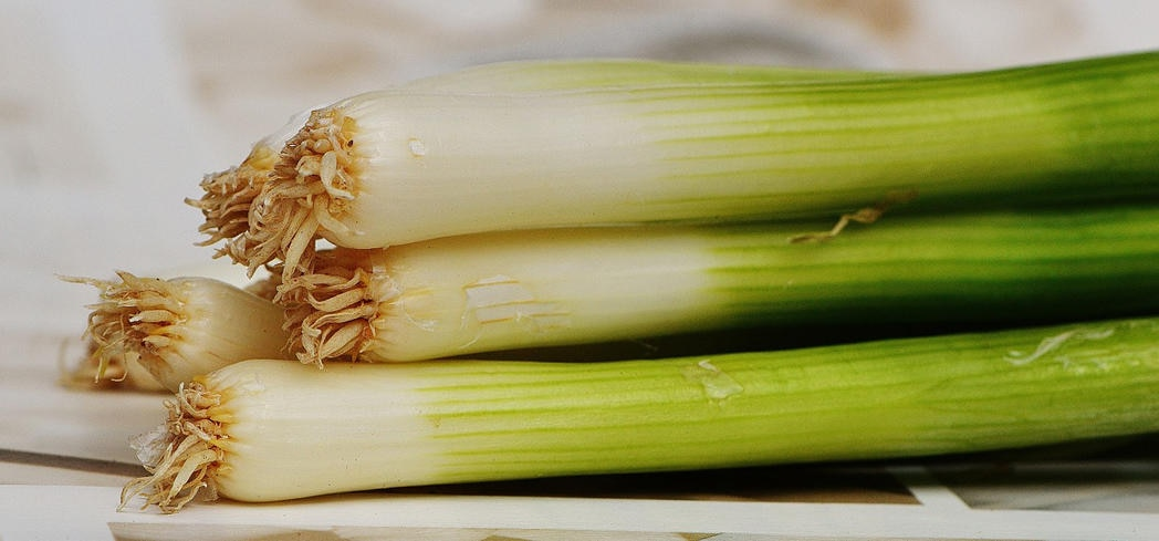 "Leeks support healthy digestion by promoting the growth of ""friendly"" bacteria in the gut"