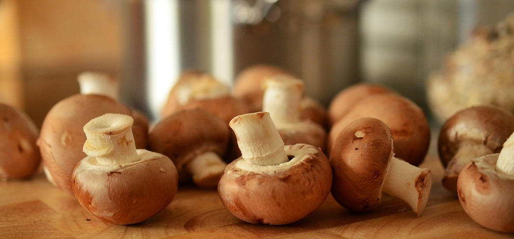 Mushrooms contain more antioxidants than many vegetables