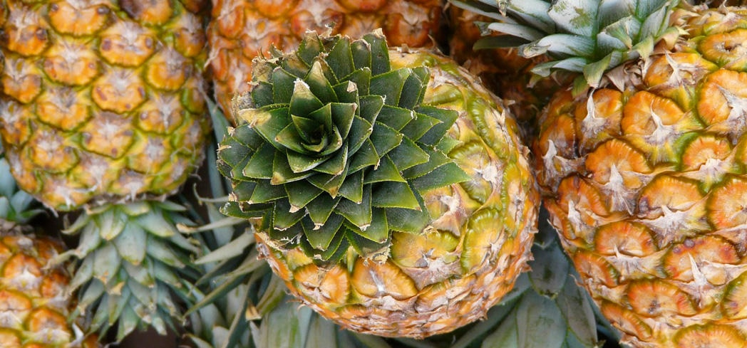 Pineapples contain high quantities of water-soluable antioxidants