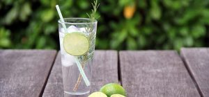 Best Gin Cocktail Recipes