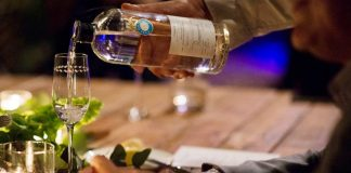 Peruse GAYOT's selections of the best premium tequilas including Casa Dragones made in San Miguel de Allende