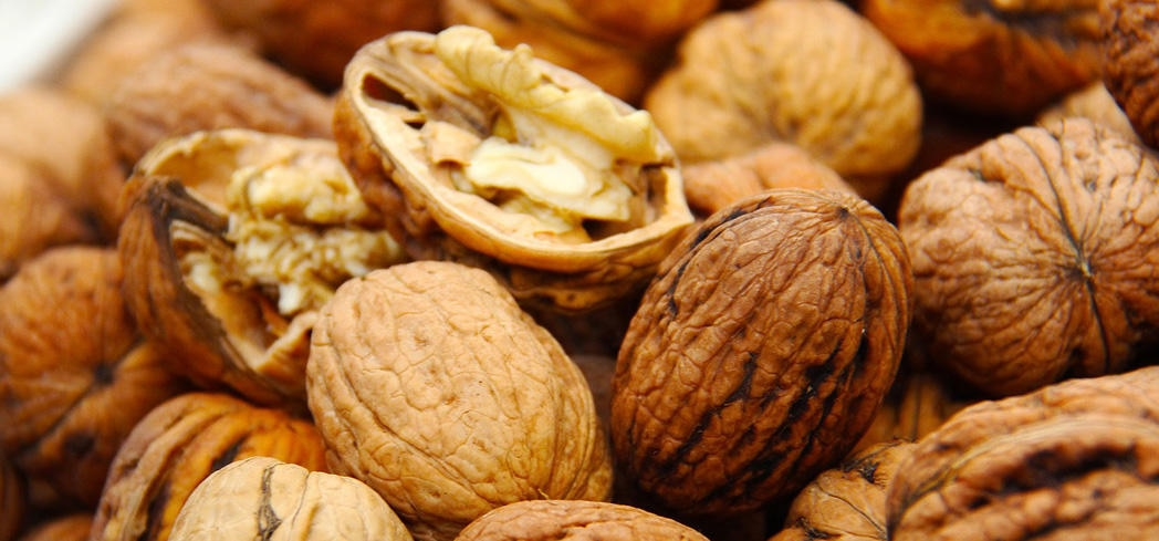 Walnuts owe many of their numerous health benefits to their rich supply of omega-3 fatty acids