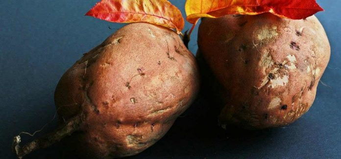 Health Benefits of Yams and Sweet Potatoes