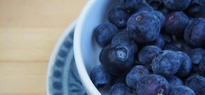 Rich in antioxidants, blueberries are among GAYOT's Top 10 Superfoods