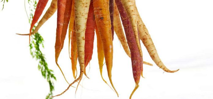 Diets rich in carotene are also thought to reduce the risk of certain cancers