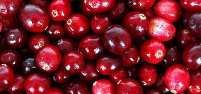 Cranberries are a tangy fruit loaded with health benefits