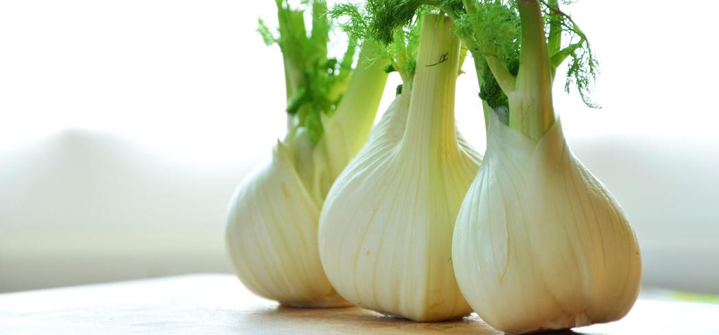 Fennel promotes a healthy immune system with a nexus of vitamins