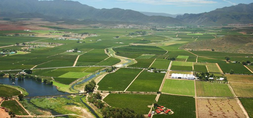 Cape Town South Africa Wine Route 62