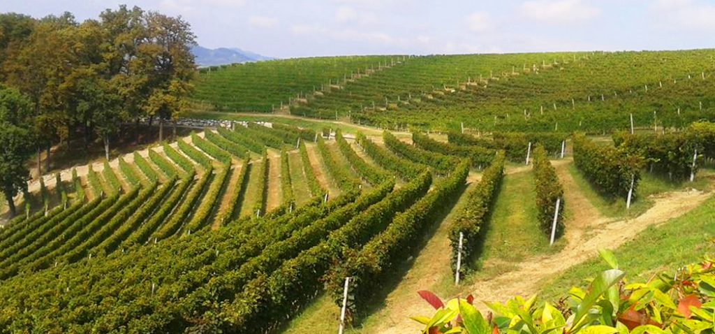 Tuscany Strada del Vino