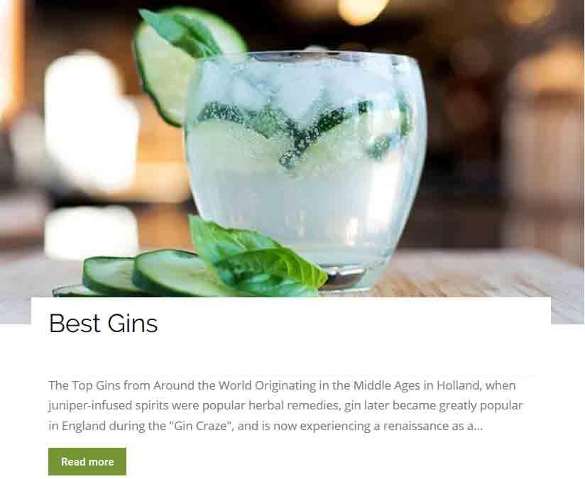 Best gins