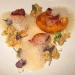 Apricot foie gras
