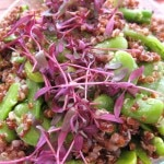 Quinoa with peas and favas