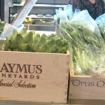 Fresh vegetables at Tiato's weekend market