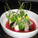 Amberjack cured with lime leaf, radishes, charred cucumber and pine needle