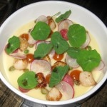 Blue Lantern Bay scallops, braised radishes, beurre blanc, fish sauce, sea buckthorn and nasturtium