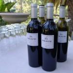 Mt. Brave wines
