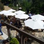 Premium wines, premium people and premium barbecue