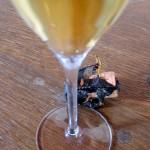 A Glass of Dom Pérignon