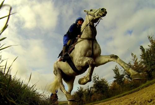 Jackdaws Castle racehorse training