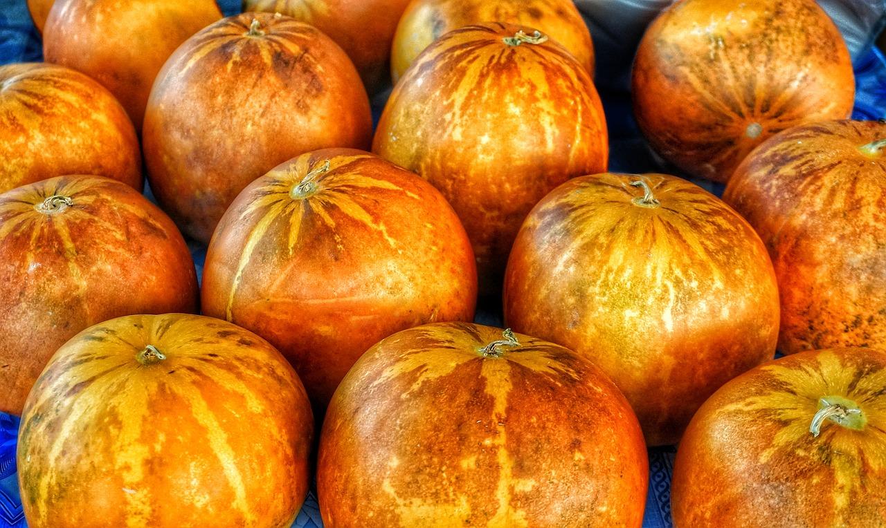 Pumpkin & squash recipes