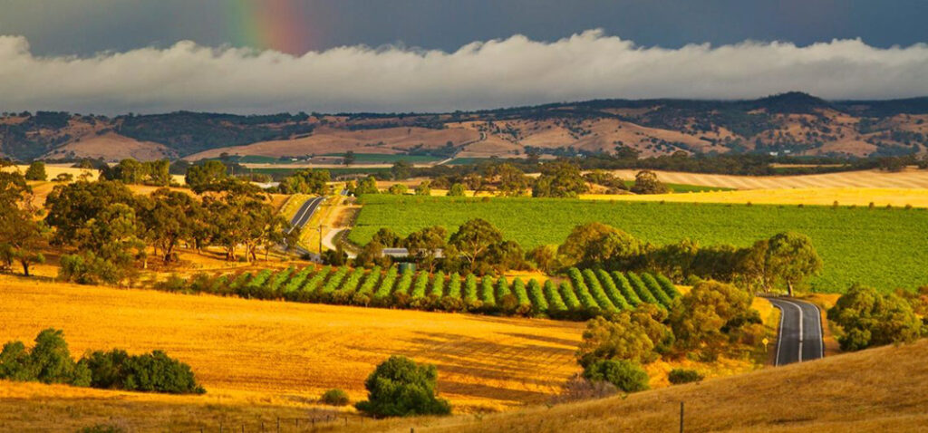 Barossa Valley Australia Wine Route