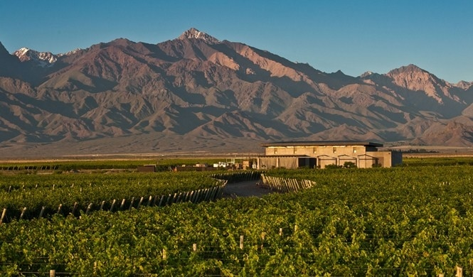 Mendoza Wine Route
