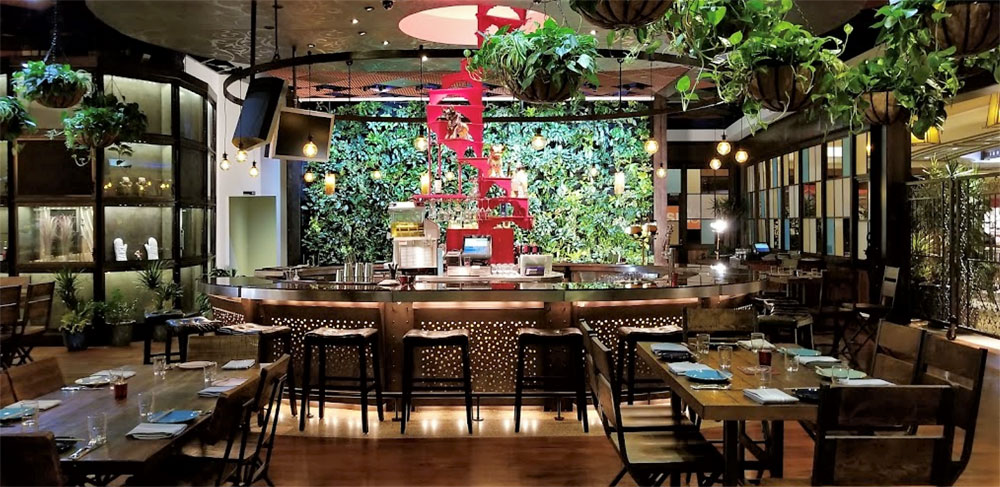 New hip & trendy restaurants