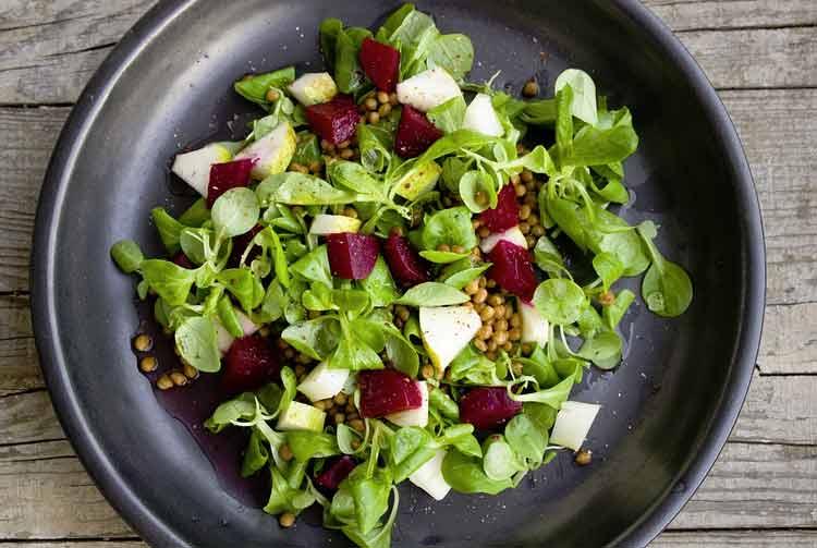 Find the best vegan restaurants near you