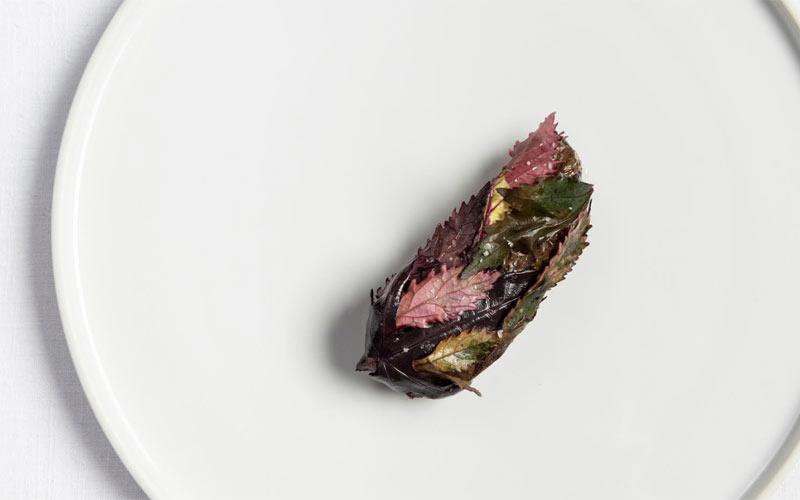 Eleven Madison Park seared foie gras (c) Evan Sung