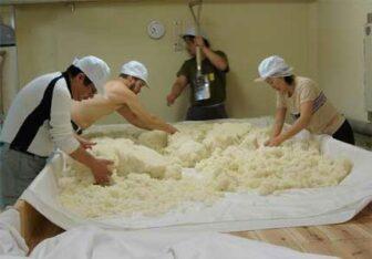 Saké rice