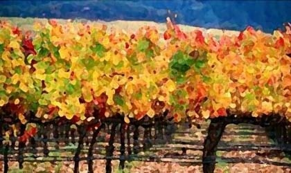 Artist's rendition of Line Shack Winery