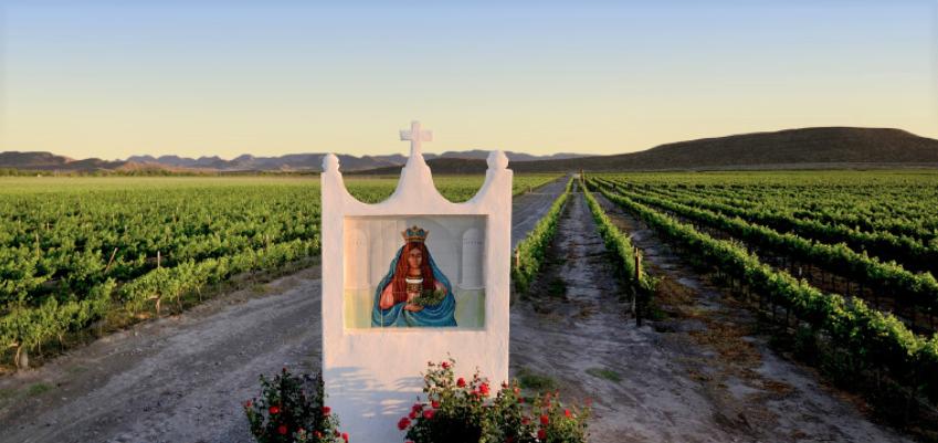 Casa Madero Winery Mexico