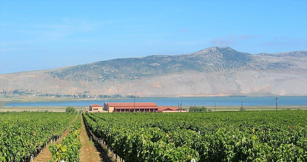 Alpha Estate vineyards Greece