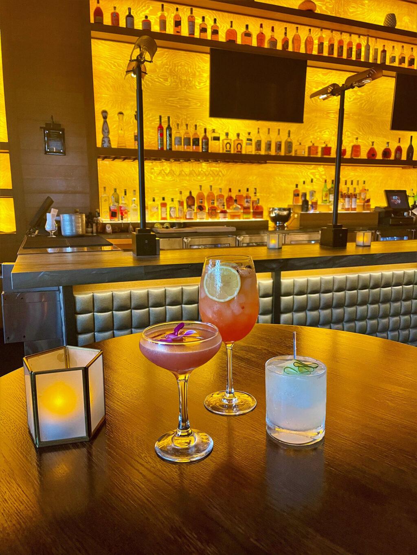 Aperitivo, Spanish Gin & Tonic and Summer Saké