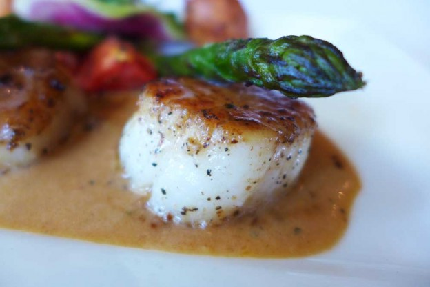 New Bedford sea scallops